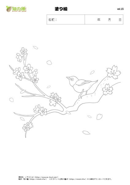塗り絵15|知の種の無料プリント