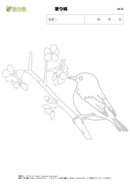 塗り絵31|知の種の無料プリント
