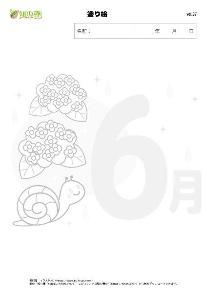 塗り絵37|知の種の無料プリント