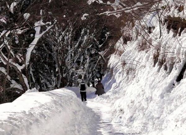S子の体験談~山間部で進む老老介護とその地域課題