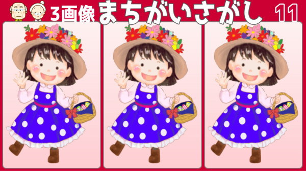 【3画像間違い探し】3枚の画像の中から異なる部分を2つ探してください