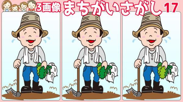【3画像間違い探し】3枚の画像の中で間違いを2か所見つける問題