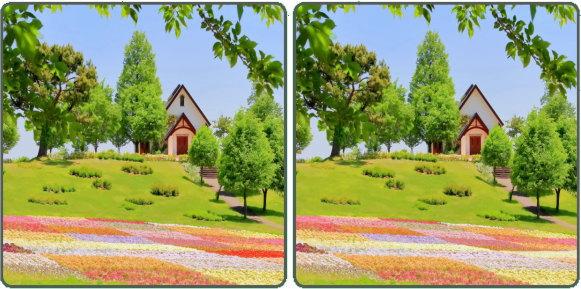 【間違い探し】2枚の写真で異なる部分を3か所探す脳トレ