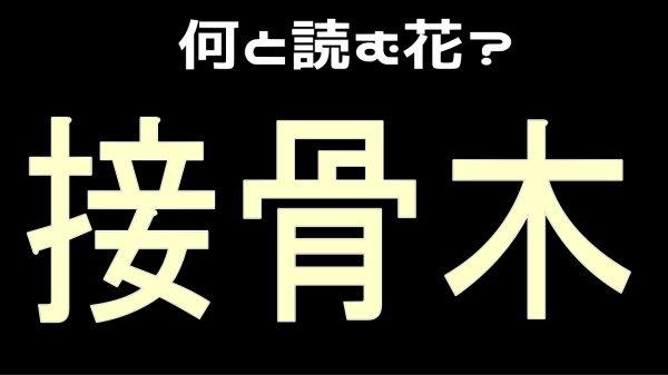 【難読漢字】花の名前を答えましょう!