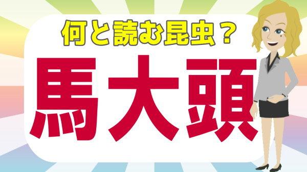 【難読漢字】読めそうで読めない昆虫の難しい漢字問題!