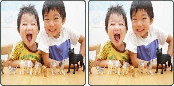 【間違い探し】左右の写真の中から3か所の間違いを探す認知症予防問題