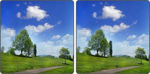 【間違い探し】写真の中で異なるところを3か所探す問題!