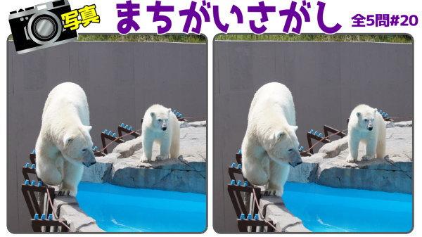 【間違い探し】2枚の写真から異なるところを3か所探す問題